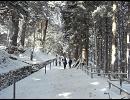 【ニコニコ動画】北東パス、2009年、冬の移動。その10(最終回)。を解析してみた