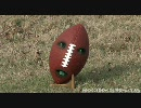 The Annoying Orange 6 Super Bowl Football
