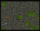 Upgrade 最終調整 : Interactive Design : KOI Pond(鯉の池) thumbnail