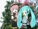 WHERE HAVE ALL THE FLOWERS GONE 初音ミク+巡音ルカ