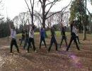 【ニコニコ動画】【戦国】 足軽ダンスをガチで踊ってみた 【BASARA】を解析してみた