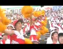 【放送事故】超かわいいチアガールの乳首が丸見え【選抜高校野球】
