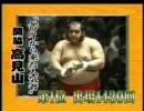 大相撲 過去の名力士