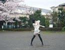 【ヲタノ娘・召使】ストロボナイツ踊ってみた【姉ソロ】 thumbnail