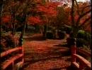 そうだ、京都行こう CMコレクション1