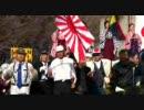 第26回 靖国神社 桜の花の下で同期の桜を歌う会 ⑤改