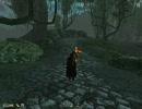 [PC] Oblivion - Shivering Isles Part15