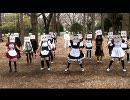 【デラララ】まっさらブルージーンズ踊ってみた【ラララ!!】 thumbnail