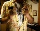 【ニコニコ動画】異国の楽器(アサラト)紹介+『GO!GO!MANIAC』演奏してみた(スロー再生)を解析してみた