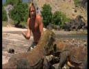 半裸でコモドオオトカゲに挑む!【オースティン・スティーブンス】