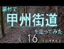 【ニコニコ動画】原付で甲州街道を走ってみた(その16)小仏峠東坂3を解析してみた