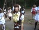 「メイド遊戯」すきパラ。札幌メイド喫茶特集
