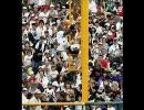 【プロ野球】 2007 日本ハムファイターズ画像集