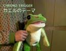 【クロノトリガー】カエルのテーマを演奏してみた【カエル楽器】