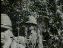 ジャングルに倒れた菊兵団