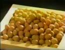 【ニコニコ動画】【たけしの】   豆  【万物○世紀】1/2を解析してみた