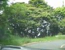 【ニコニコ動画】よろんの少しブラジなセリカでドライブしてみるよ!【115回目】を解析してみた