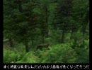 Oblivion プレイ動画 テクテク冒険記 part3