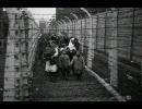 【ニコニコ動画】アウシュビッツ 「収容所の番人たち」 3/5を解析してみた