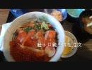 【ニコニコ動画】最果ての駅を目指す日本縦断の旅2010 北海道編 第8回を解析してみた