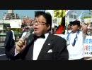 (4/5) 国民の生命と財産を守った警察官を断固支持するデモ行進 in 奈良