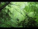 【ニコニコ動画】[森林] 疲れている貴方を癒して見る (高音質版)を解析してみた