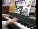 【ピアノ】某大型家電量販店でRED ZONE弾き逃げしてきた