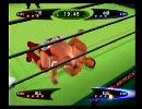 闘魂三銃士世代のプオタがキングオブコロシアム2を実況プレイ 第15試合