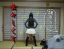 【ニコニコ動画】【馬が】姉弟で楽しく女々しくて踊ってみた+不自然なガール【動いた】を解析してみた