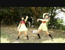 【にゃんコ】お友達とハートキャッチ☆パラダイス【アス比修正】