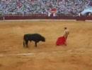 スペイン闘牛 真実の瞬間