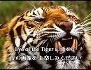 愛・オブ・ザ・タイガー