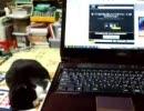 【ニコニコ動画】怒ってた猫の叫びを寝ていたうちの猫に聞かせてみるを解析してみた