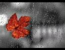 【作業用BGM】暗い梅雨の午後に聴く音楽【憂鬱】 thumbnail