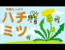ハチミツ 期間限定WEBラジオ 第4回