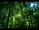 イングランド民謡 『Greensleeves』