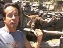 【ニコニコ動画】ガラの悪いおっさんにしか見えない、とんでもないヤギを解析してみた