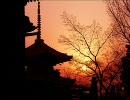 GONTITI  『My Favorite Things』 そうだ京都へ行こう thumbnail