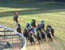 【競馬】 2005年フェアリーS ダイワパッション