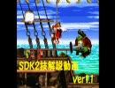 【猿でも分かる】スーパードンキーコング2 技解説【RTA/TAS】 thumbnail