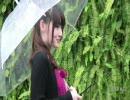 美女暦の美女 thumbnail
