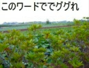 神曲「横浜市泉区」ver,orz