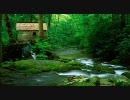 【ニコニコ動画】【作業用BGM】 Serenade 小川のせせらぎ(音質改善版)を解析してみた