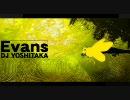 【ミツバチ】BEEvans【Evans】