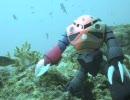 シャア専用ズゴックを沖縄の海で水中撮影してみた