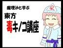 魔理沙と学ぶ東方毒キノコ講座5 thumbnail