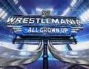 WrestleMania 23 Part7 メリーナvsアシュリー(WWE女子王座戦)