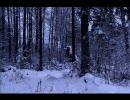 【がくぽ】暗い森の歌【A.ボロディン】