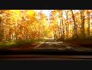 【ニコニコ動画】【車載動画】八甲田山を走ってみた(秋・紅葉篇)【青森】を解析してみた