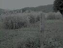 【ニコニコ動画】【東方自作アレンジ】蓮台ノ夜行 原曲:夜のデンデラ野を逝くを解析してみた